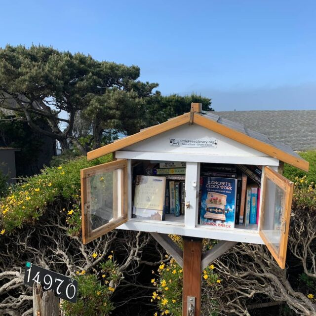 My lovely niece sent me a photo from California. This is my book, Concrete Clockwork, in a #LittleFreeLibrary A a portion of the proceeds from my book sales are donated to libraries in the Frogtown area of St. Paul, Minnesota, so this is very exciting! #suspense #femaleprotagonist #thriller #California